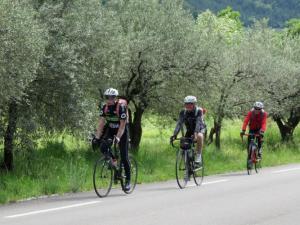 1239troisCyclistesenaction