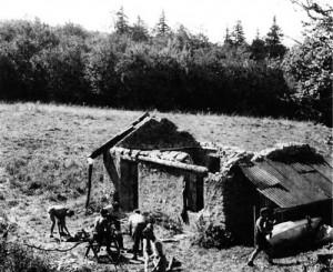 1945chaletDetruitOursNB