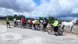 véloCamargue0530montures